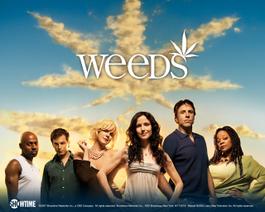 Weeds_cast_1280x1024