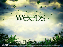 Weeds_vines_1024x768